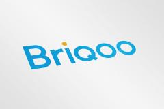 Briqoo Logo Ontwerp